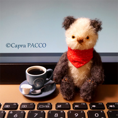 f:id:capra-pacco:20210728141236j:plain