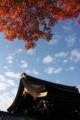 [京都][南禅寺]