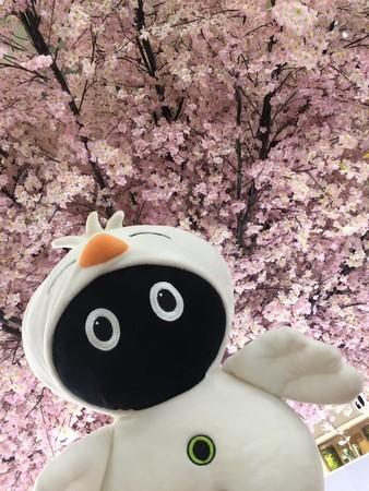 f:id:captain-tanzawa:20191226161104j:image