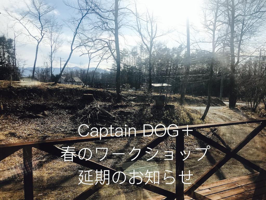 f:id:captaindog082:20200303171432p:image