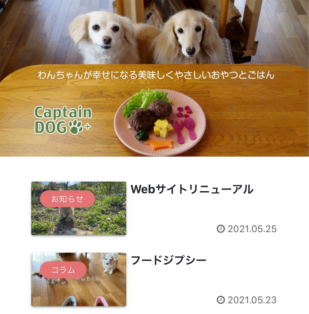 f:id:captaindog082:20210525170320j:image