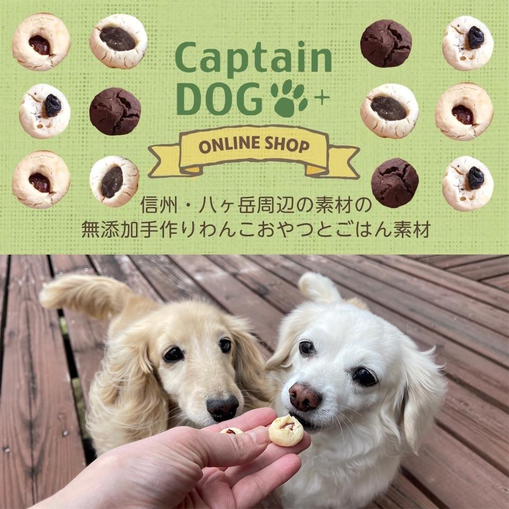 f:id:captaindog082:20210525170354j:image