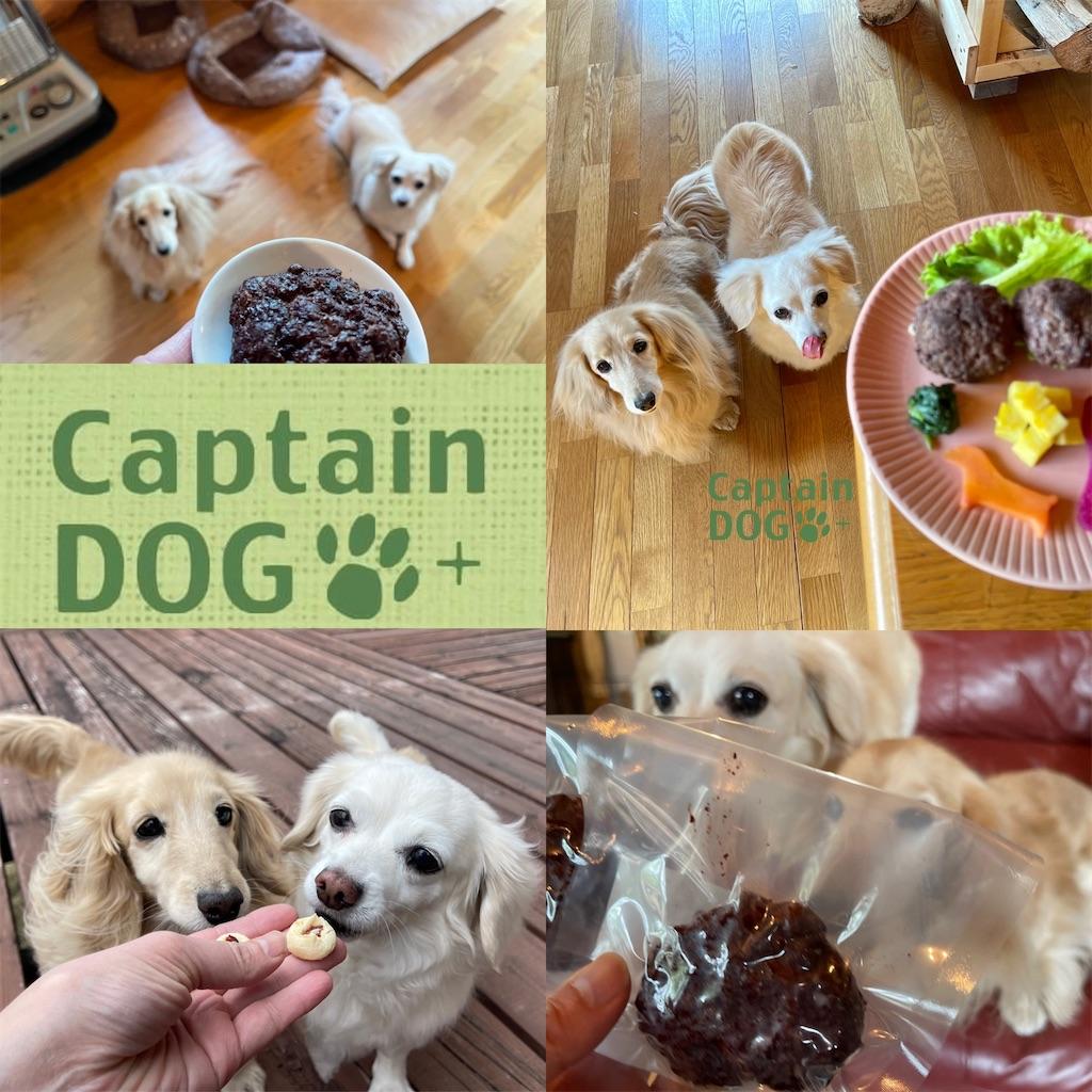 f:id:captaindog082:20210714152015j:image