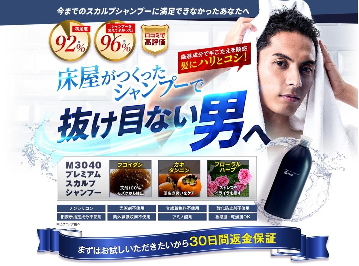 f:id:captainmaruko:20201101014041j:plain