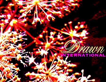 f:id:caramelaucafe:20100129011357j:image:right