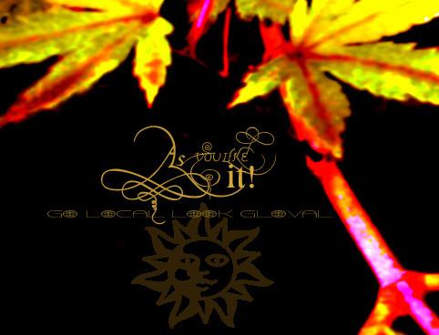 f:id:caramelaucafe:20140717231435j:image
