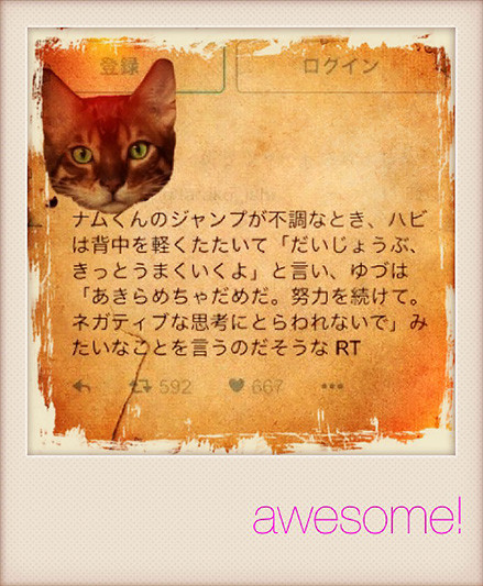 f:id:caramelaucafe:20160127163139j:image