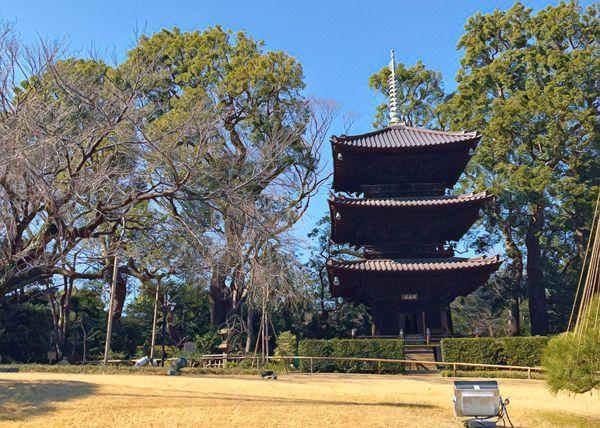椿山荘の庭園にはなぜか三重塔などがある