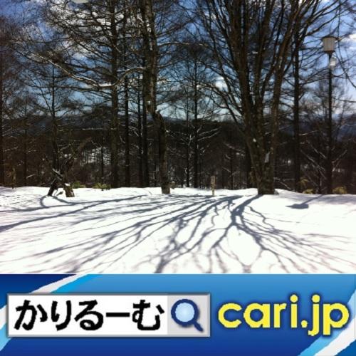 f:id:cari11:20200301121229j:plain
