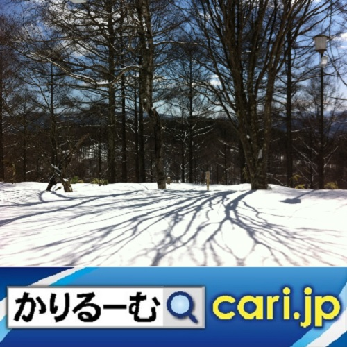 f:id:cari11:20210201085051j:plain