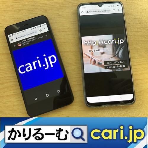 f:id:cari11:20210423203937j:plain