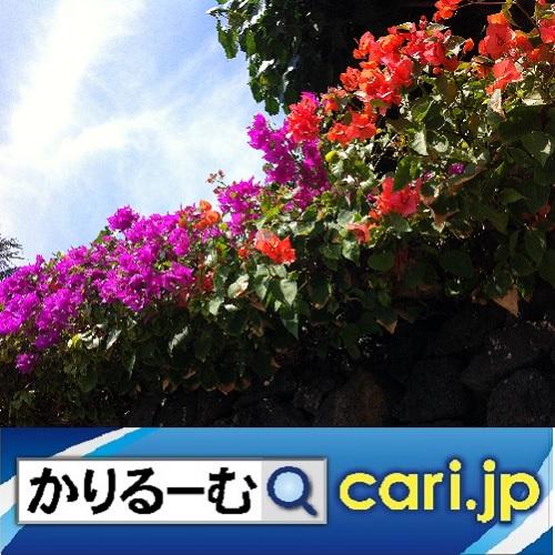 f:id:cari11:20210901190021j:plain