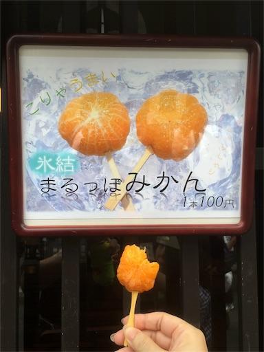 f:id:carorikun:20160917075515j:image