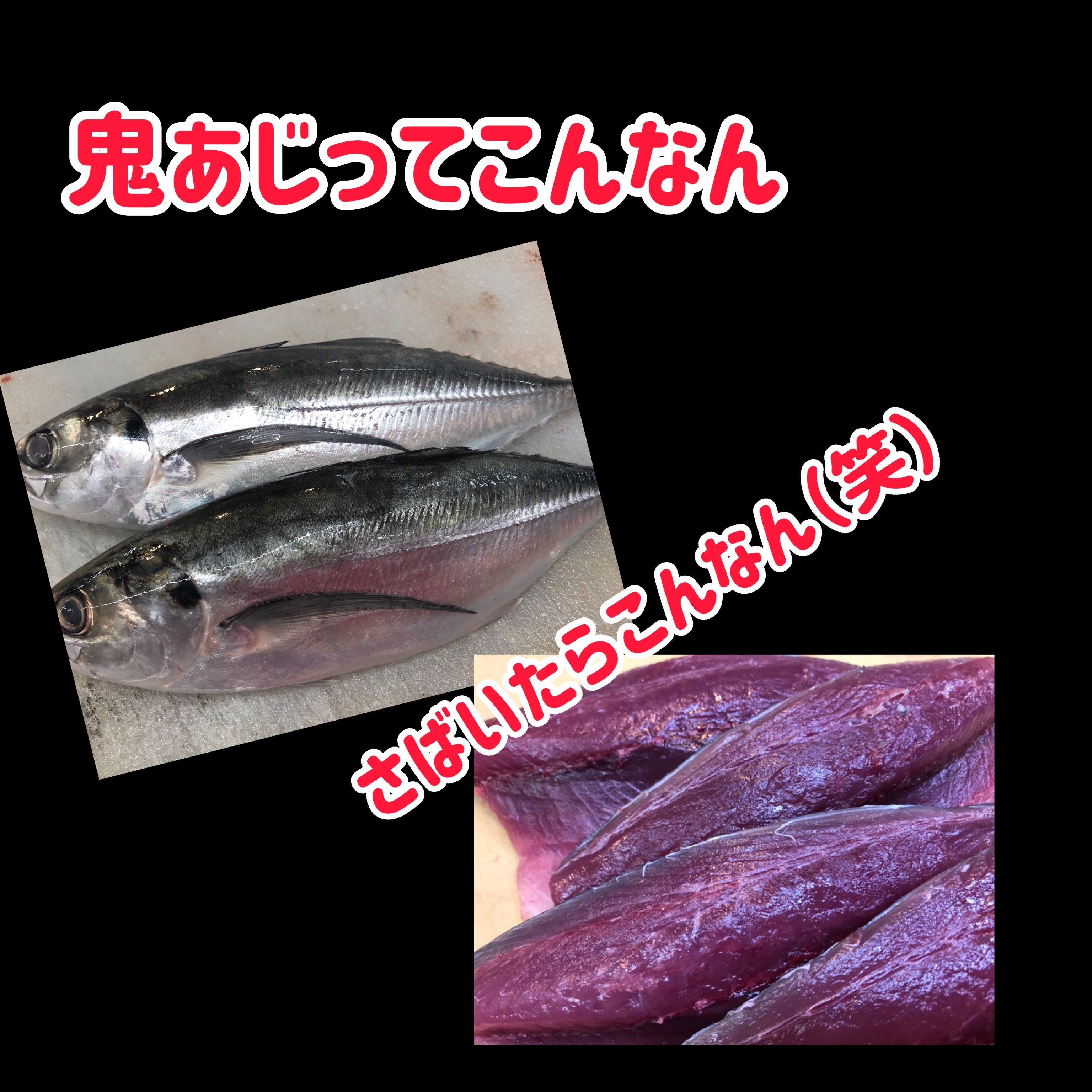f:id:carp_0301_kenta:20201023155157j:image