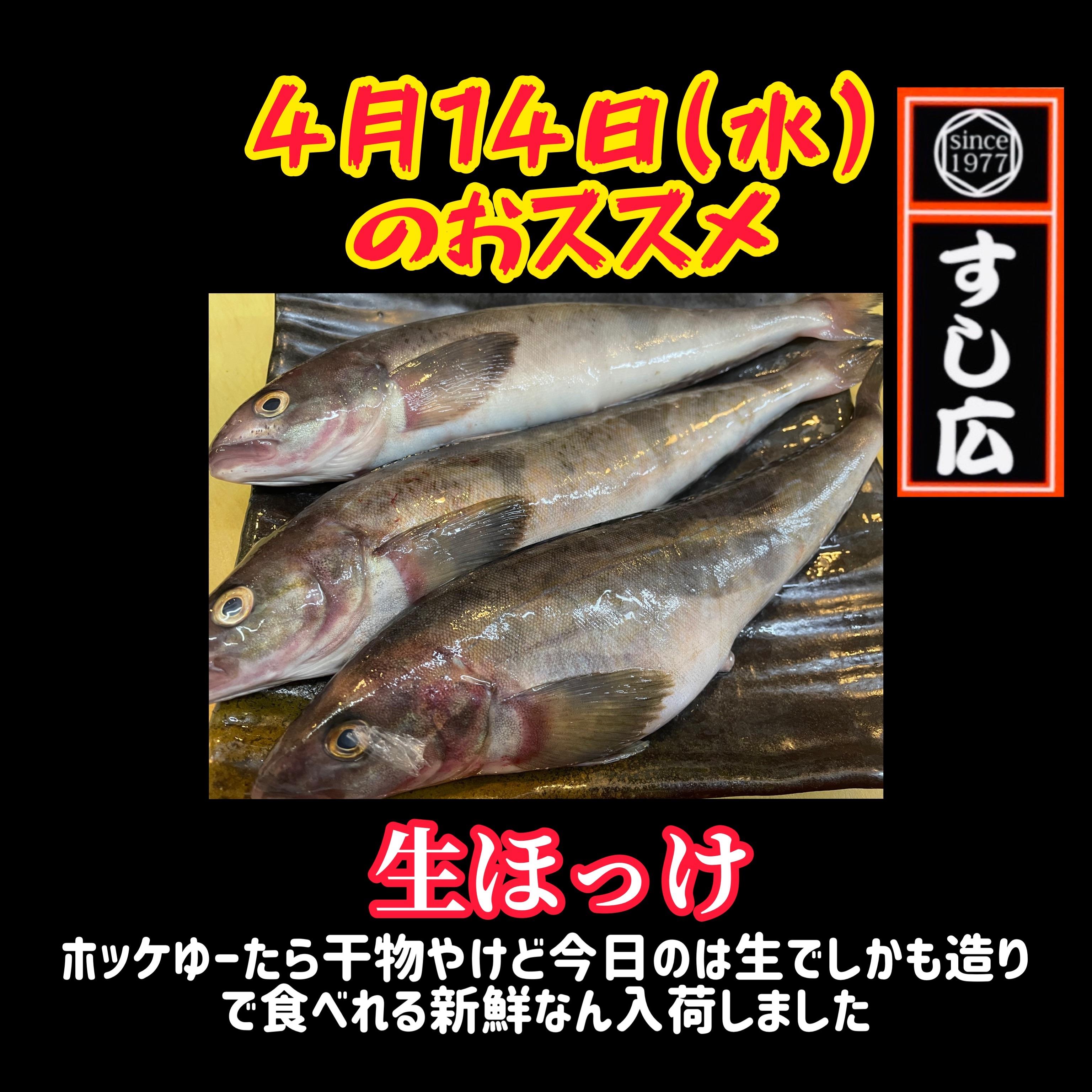 f:id:carp_0301_kenta:20210414120822j:image