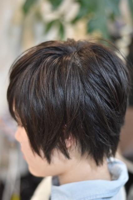f:id:caruma99:20180108123345j:plain