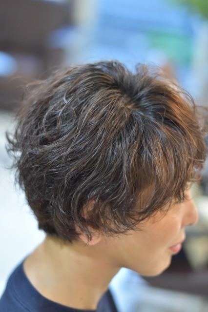 f:id:caruma99:20180507110534j:plain