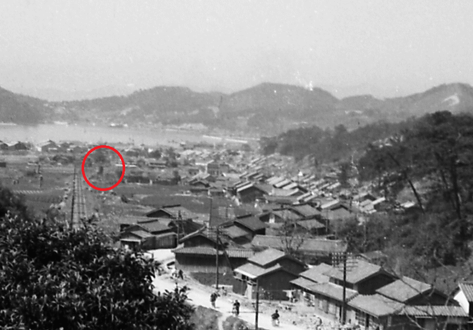 淡路交通鉄道線国道28号線との分岐(福良付近)