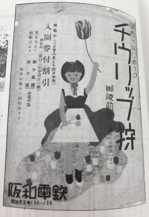 阪和電鉄チューリップ狩り広告