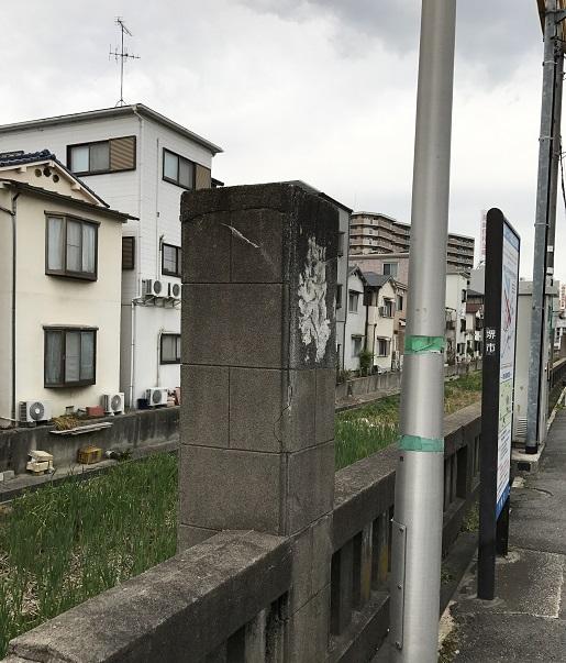 上野芝月見橋跡の横の湿地帯