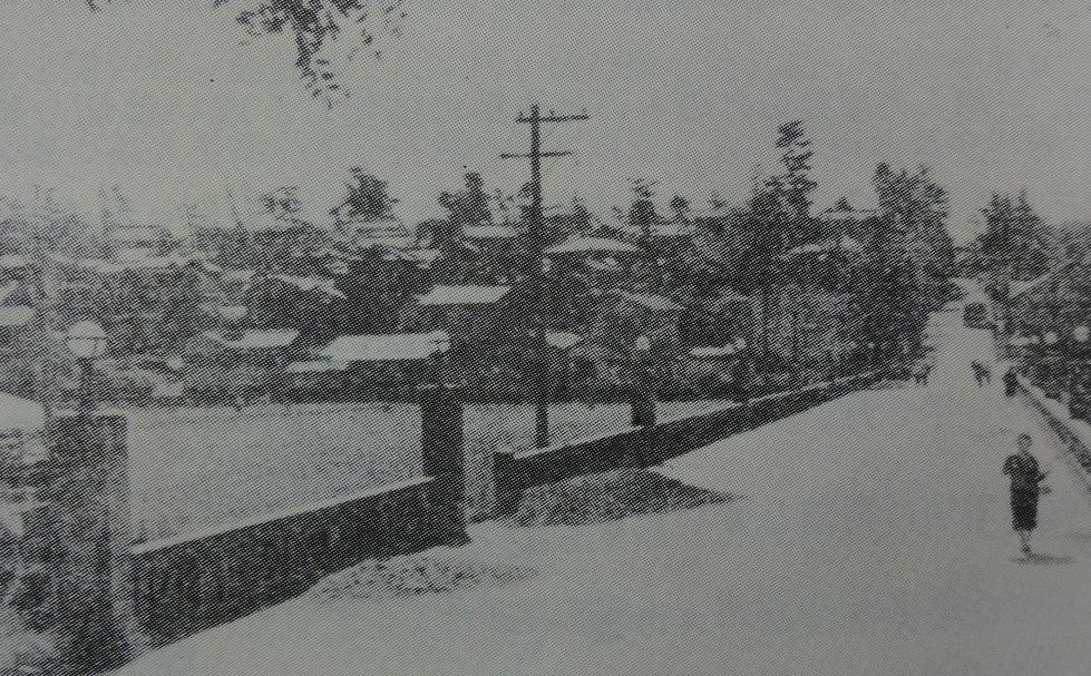 昭和7年か8年頃の上野芝月見橋の写真