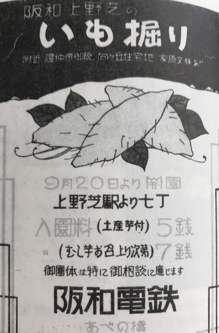 阪和電鉄上野芝いも掘り広告