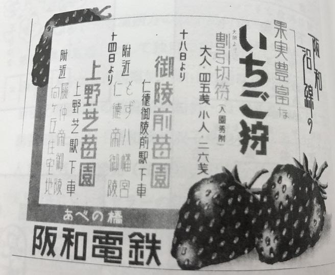 阪和電鉄上野芝いちご狩り広告