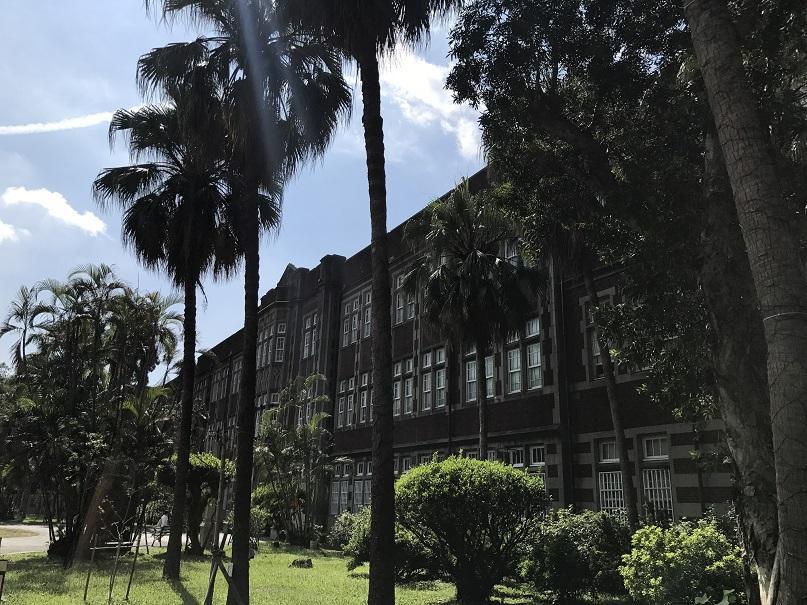 台湾師範大学の校舎とヤシの木