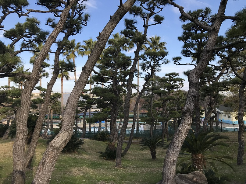 日本一低い一等三角点がある山蘇鉄山の頂上からの風景