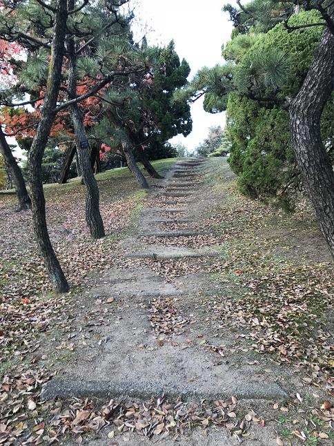 日本一低い一等三角点がある山蘇鉄山の山道