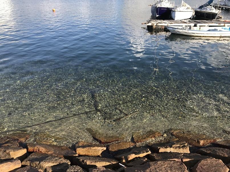 出島漁港水がきれい