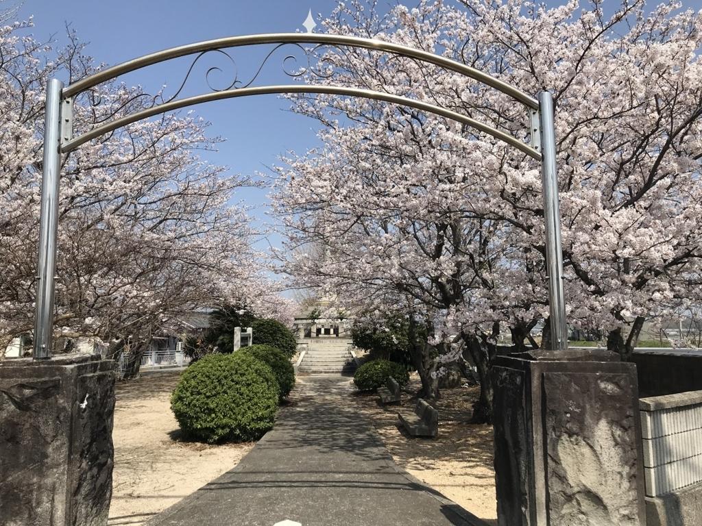南あわじ市忠魂碑と桜