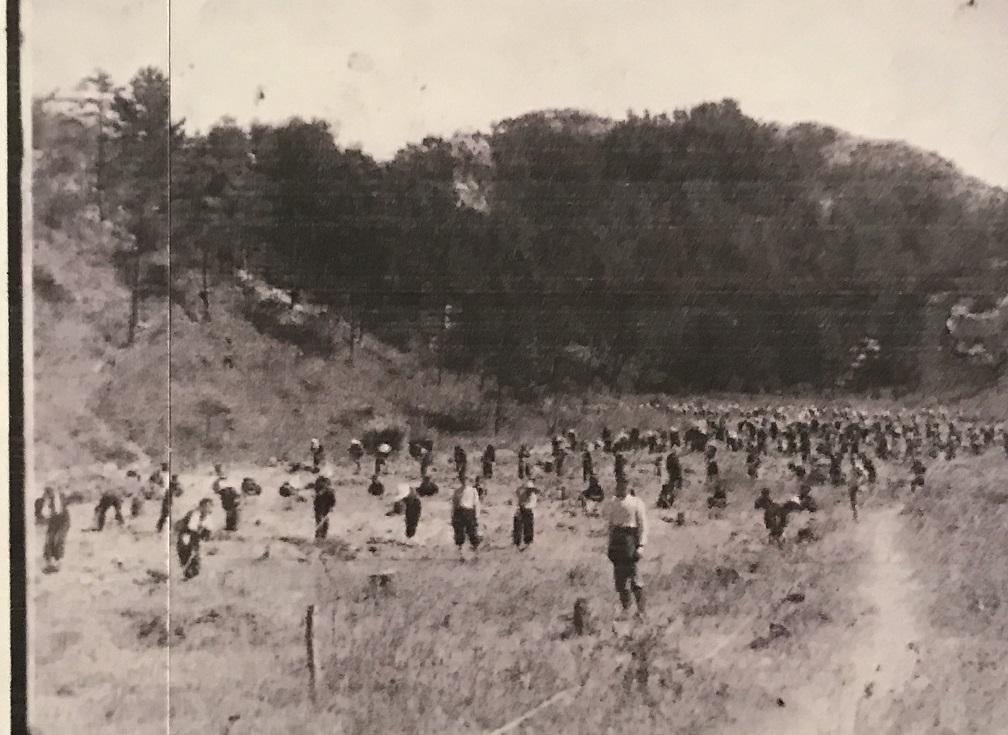 昭和19年砂川遊園畑