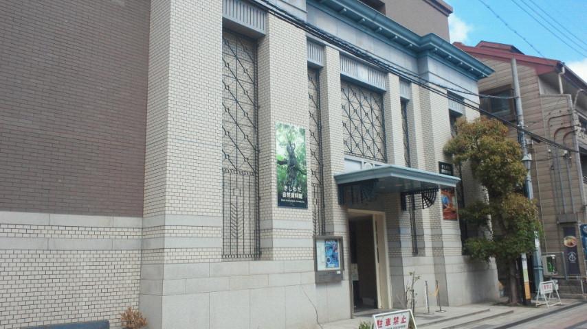 岸和田自然史資料館