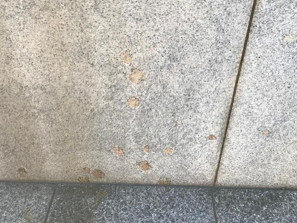 神戸市立博物館銃痕