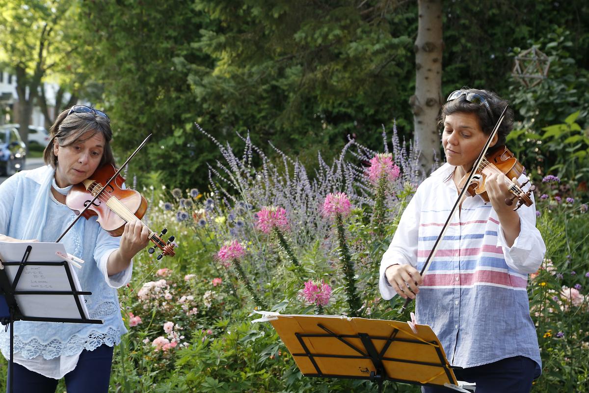 バイオリニストが花畑の前で演奏 http://ensemblecaprice.com/ Ensemble Caprice 所属のバイオリニスト