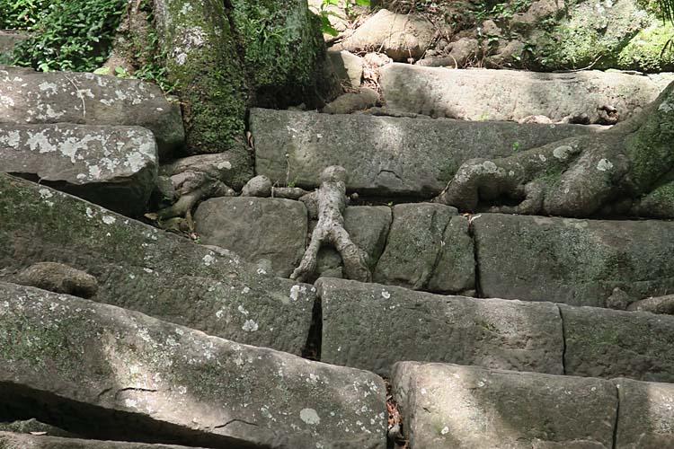 和歌山城の小人