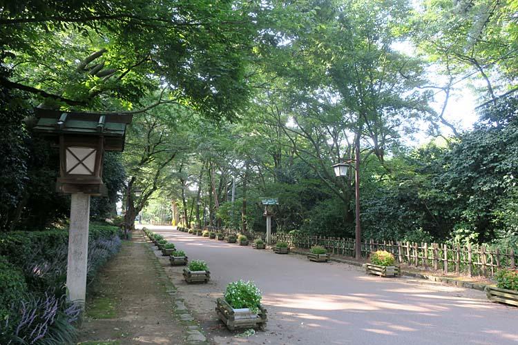 高岡城 二の丸への道