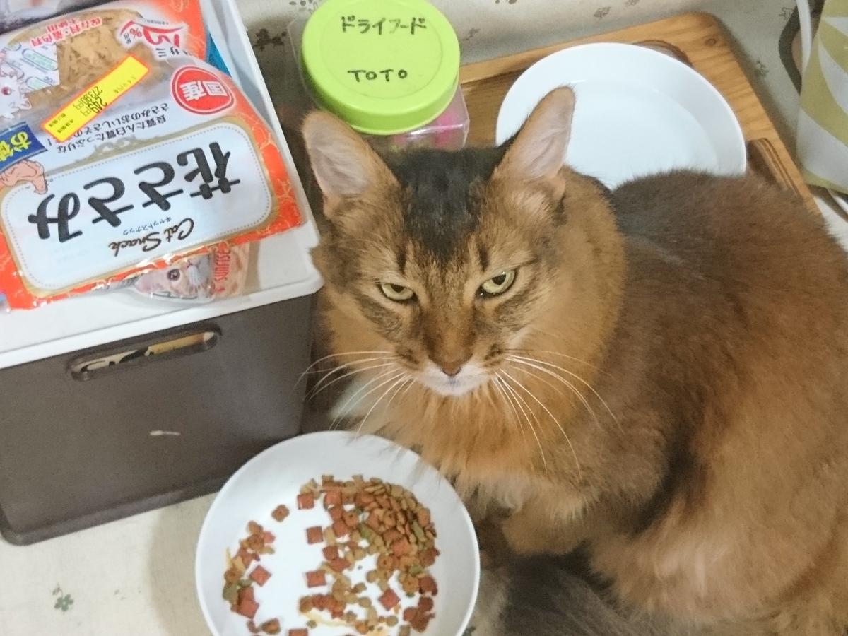 f:id:cat-cat-48:20200831213405j:plain