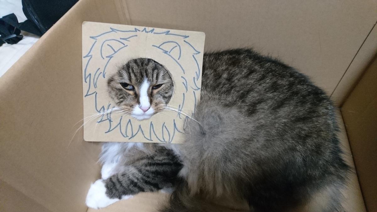 シンバに変身したトト