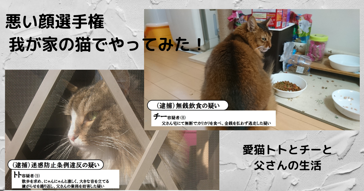 f:id:cat-cat-48:20210331120743p:plain