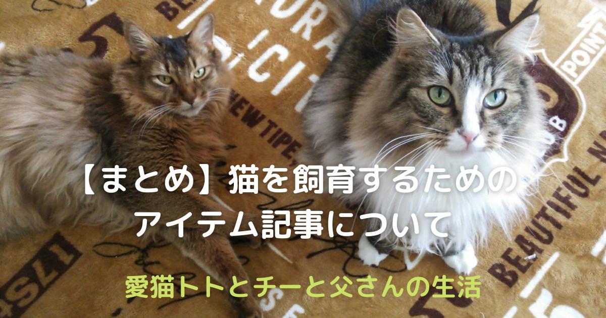 f:id:cat-cat-48:20210501122425p:plain