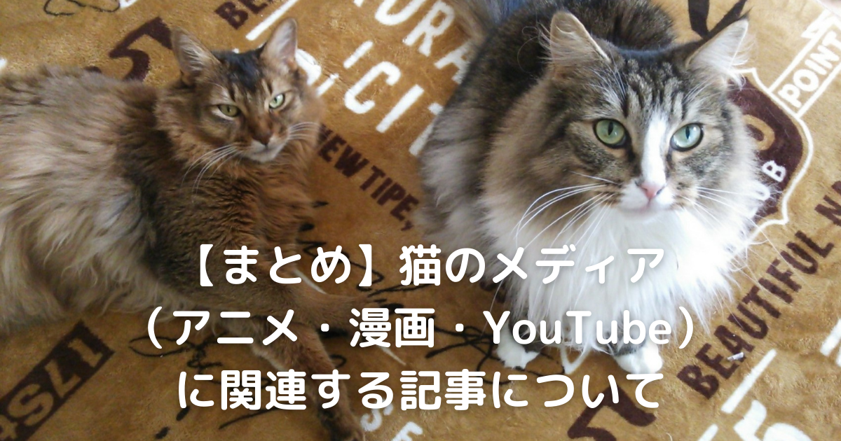 f:id:cat-cat-48:20210501133922p:plain