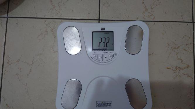 体脂肪率の