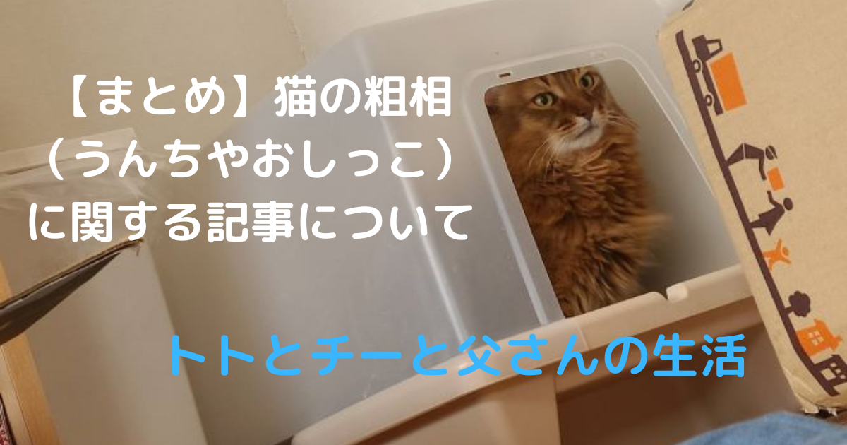 f:id:cat-cat-48:20210724151528p:plain