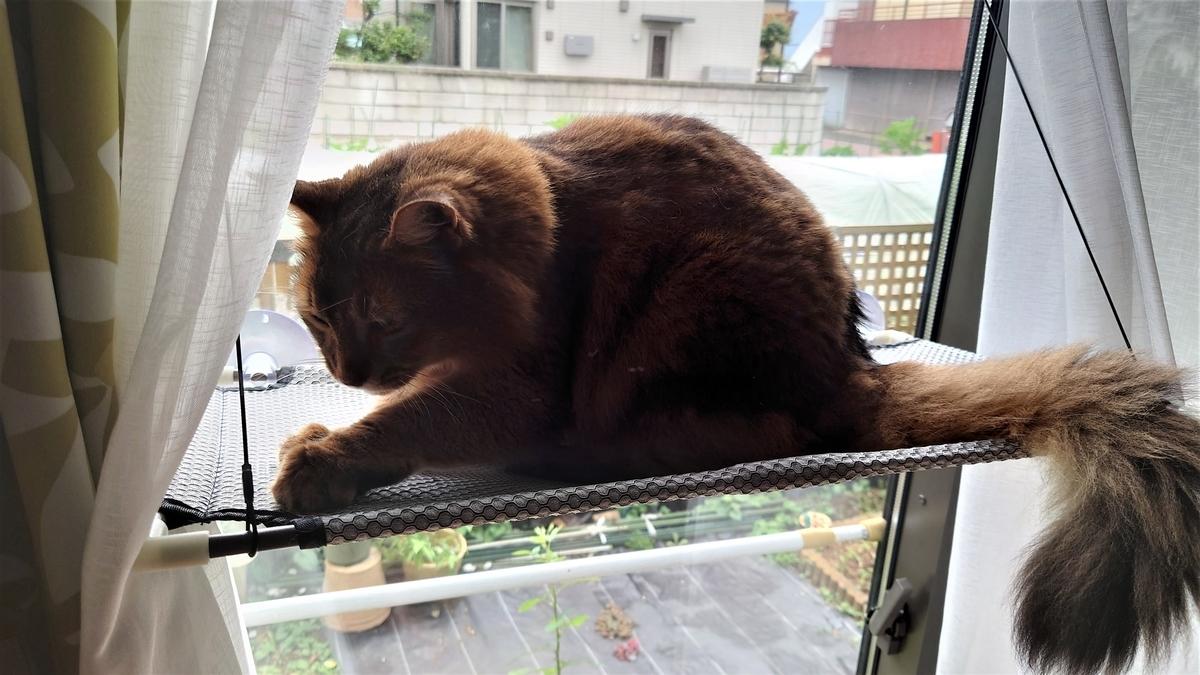 猫窓ハンモックの設置