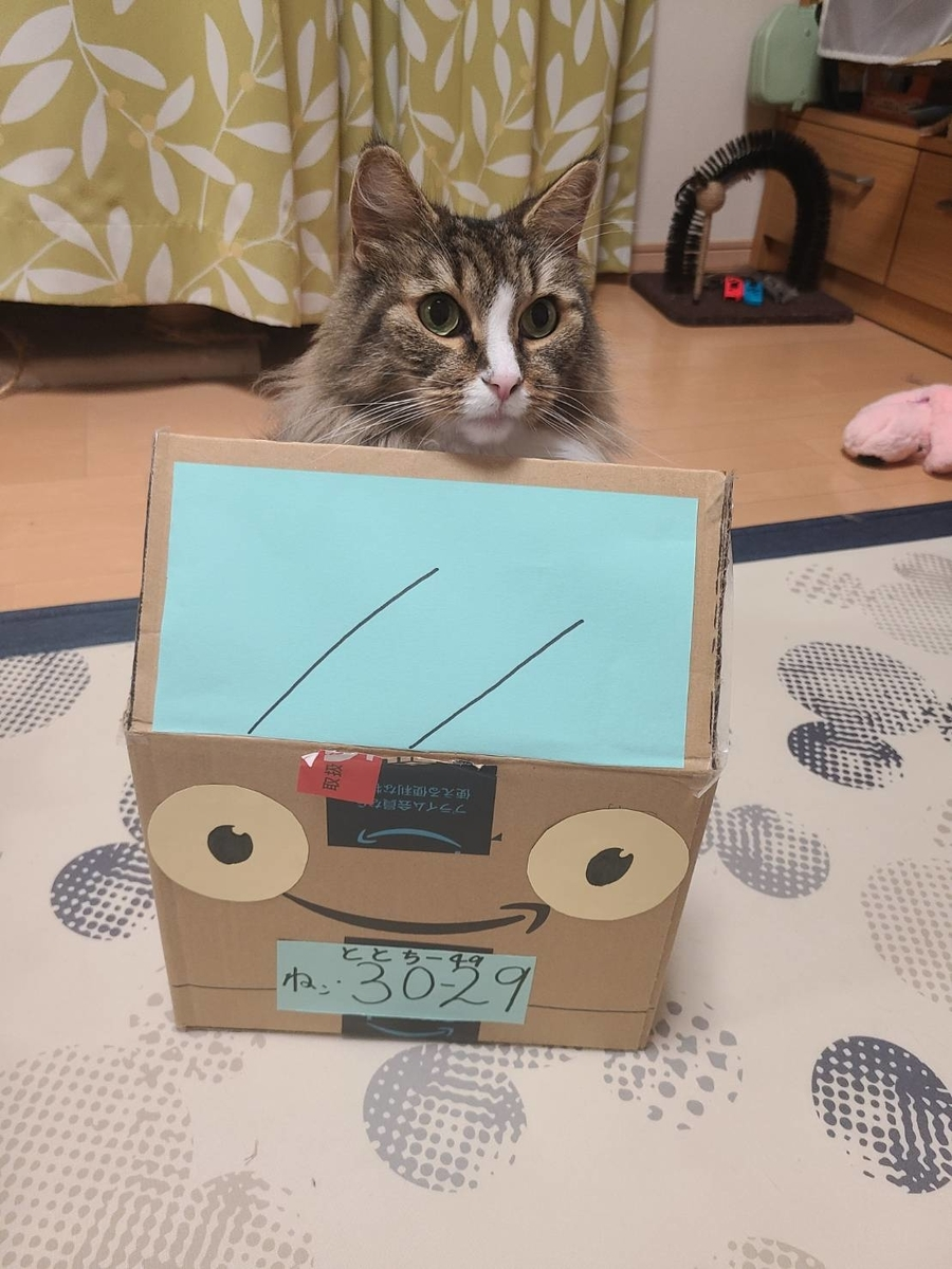 猫バスに乗る猫