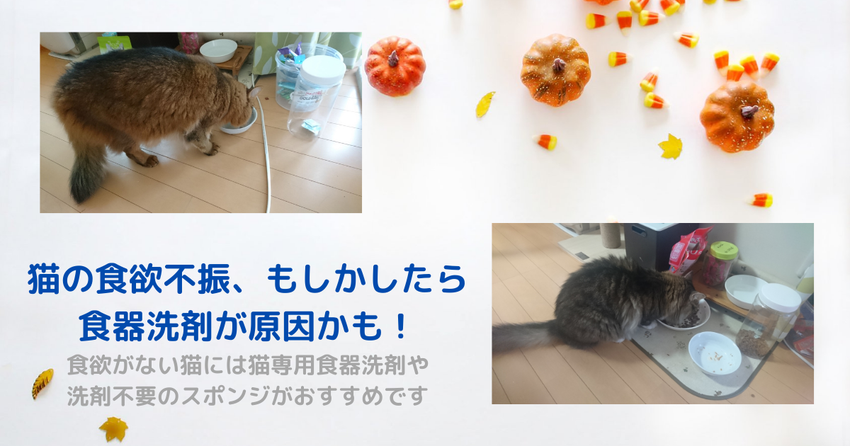 f:id:cat-cat-48:20211003100859p:plain