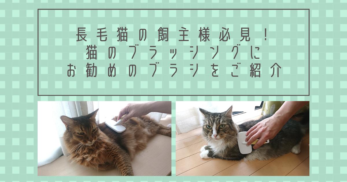 f:id:cat-cat-48:20211023090851p:plain