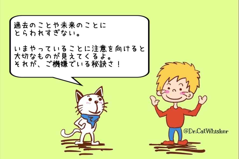 f:id:cat-whisker:20170730113001j:plain